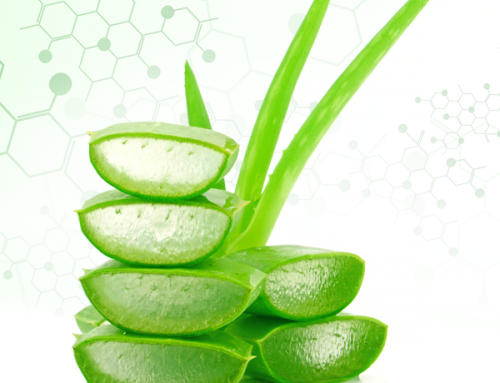 Applied DNA and Lily of the Desert to Prove Aloe vera Origin and Authenticity in Finished Goods