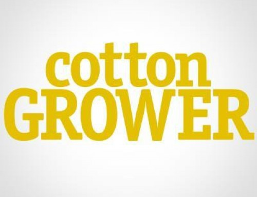 Cotton Grower | Riding a Rising Market